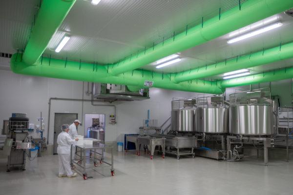 Sajtkádak a Szarvasi Agrár Zrt. örménykúti tejfeldolgozó üzemében az avatás napján, 2019. október 9-én. Fotó: MTI, Rosta Tibor