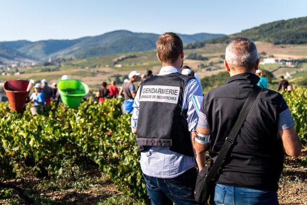 A francia és a bolgár rendőrség közös akciójában 4 személyt vettek őrizetbe embercsempészet és munkaerő-kizsákmányolás gyanújával - Fotó: Europol