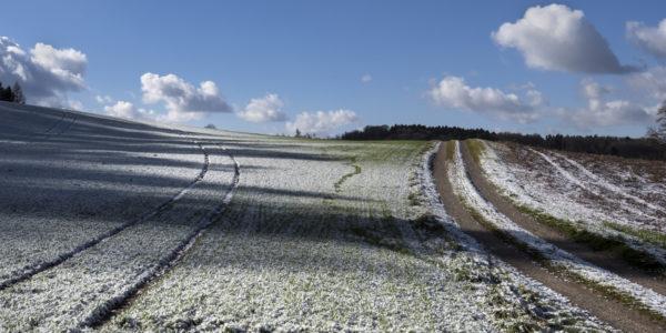 A technológia az időjárás okozta és egyéb károk esetén azok pontos feltérképezésében is segít (Fotó: Generali Biztosító)