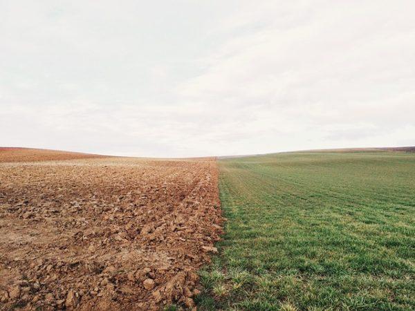 Az osztatlan közös földtulajdon kérdését rendeznék új szabályozással
