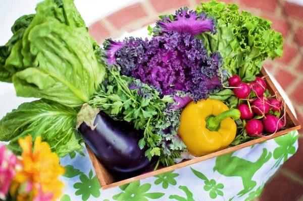 Felrobbant a zöldségek ára az időjárás miatt (Fotó: Pixabay, JillWellington)