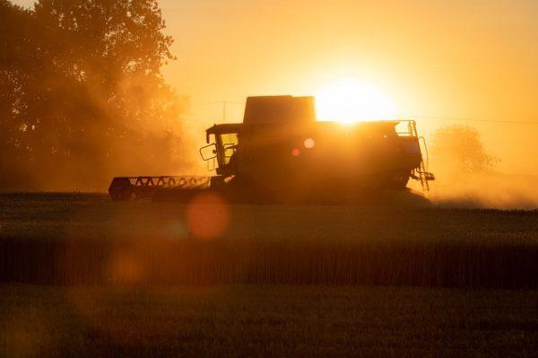 212 milliárd forintot fizettek ki agrártámogatások címén a magyar gazdáknak - képünk illusztráció