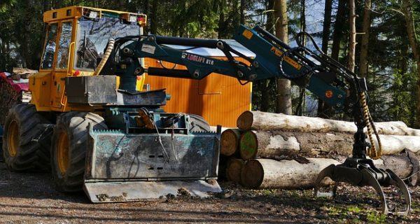 6,33 milliárd forint jut az erdészeti gépberuházások támogatására - képünk illusztráció