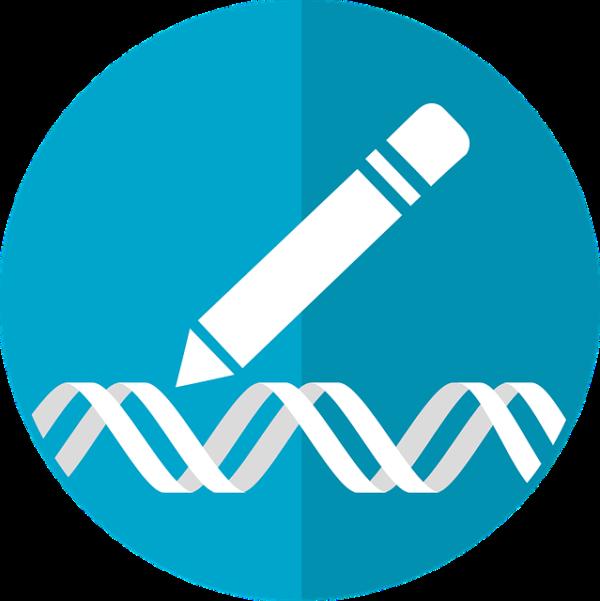 A génszerkesztés új megoldásokat és eredményeket ígér, de a használata génmódosításnak számít