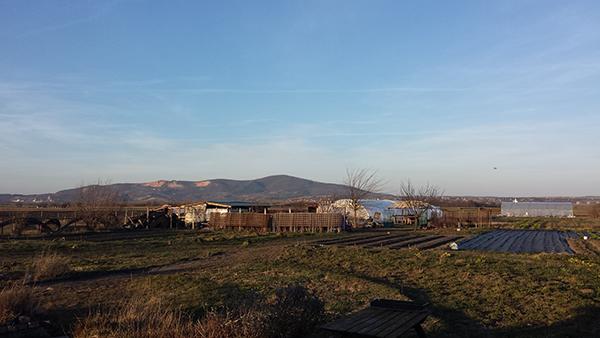 Az agrometeorológiai jelentés szerint jó a magyar talajok vízellátottsága