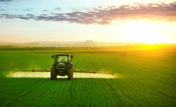 A FERTIACTYL biostimulátor komplex talajon keresztül is képes felszívódni és kifejteni hatását