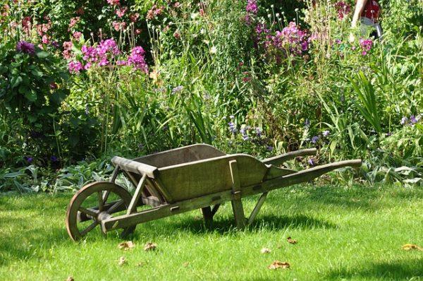 A kertészkedésnek sok jó pozitív hatása lehet az emberi szervezetre (Fotó: Pixabay, NadineDoerle)