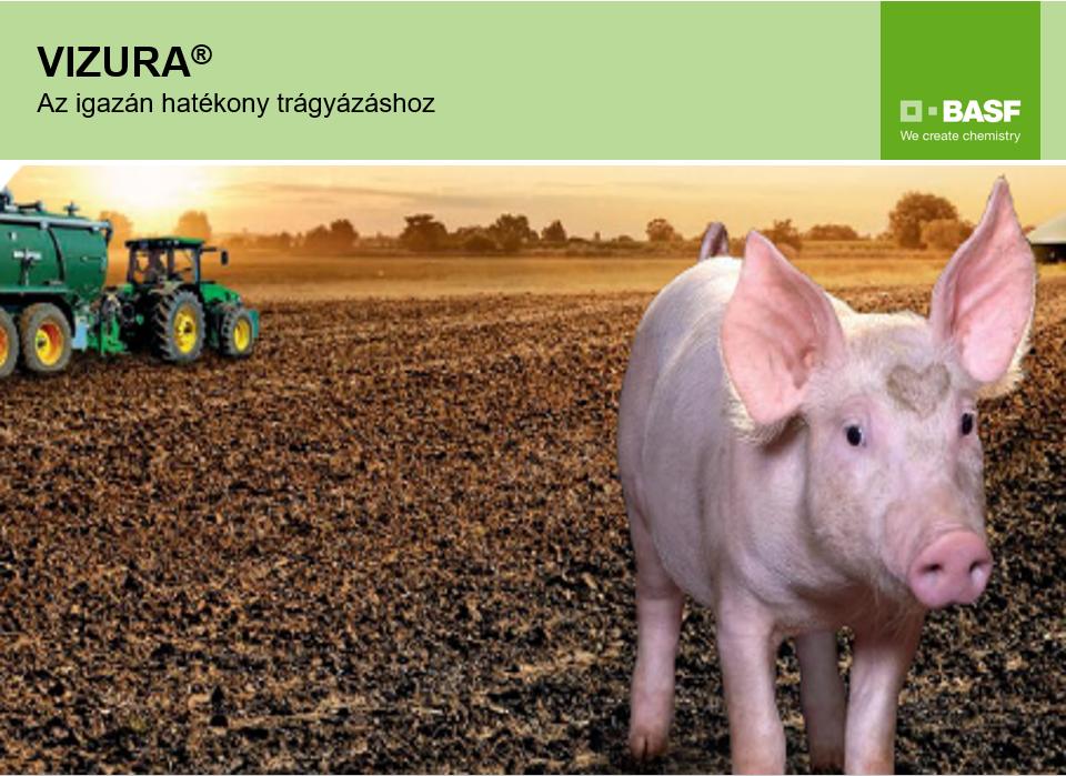 Sokkal jobban hasznosul a hígtrágya nitrogéntartalma inhibitorok alkalmazásával - Forrás: BASF Hungária Kft.