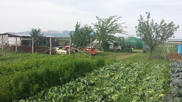 A mezőgazdasági őstermelők adózásával kapcsolatos kiadvány részletesen leírja a téma tudnivalóit - képünk illusztráció
