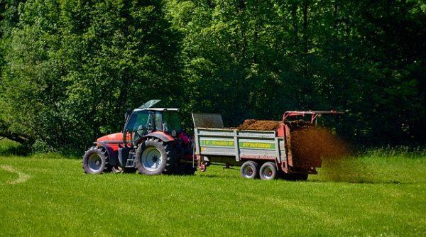 A gazdák a kijárási korlátozások ellenére dolgozhatnak, ahogy minden munkavállaló. (Fotó: Pixabay, TF3000)