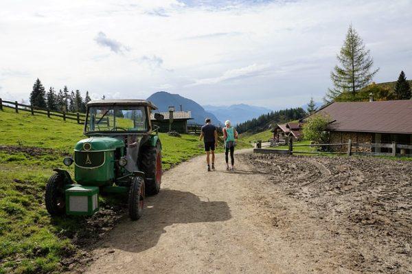 Az idénymunkások szolgálataira Ausztria mezőgazdaságának is nagy szüksége van - képünk illusztráció