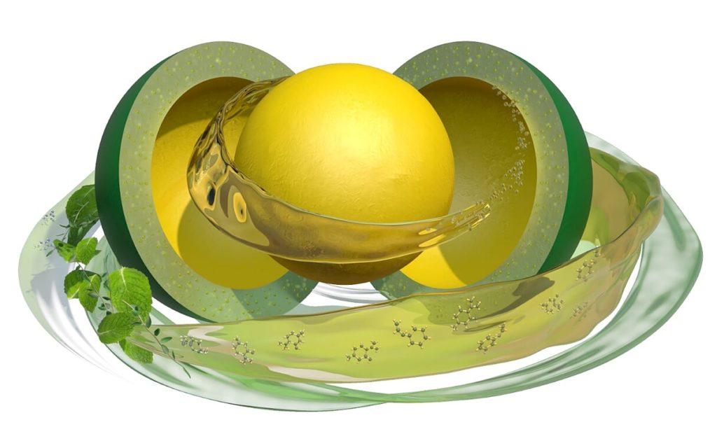 A Digestarom® DC aktiv összetevői folyamatosan szabadulnak fel az emésztőrendszerben