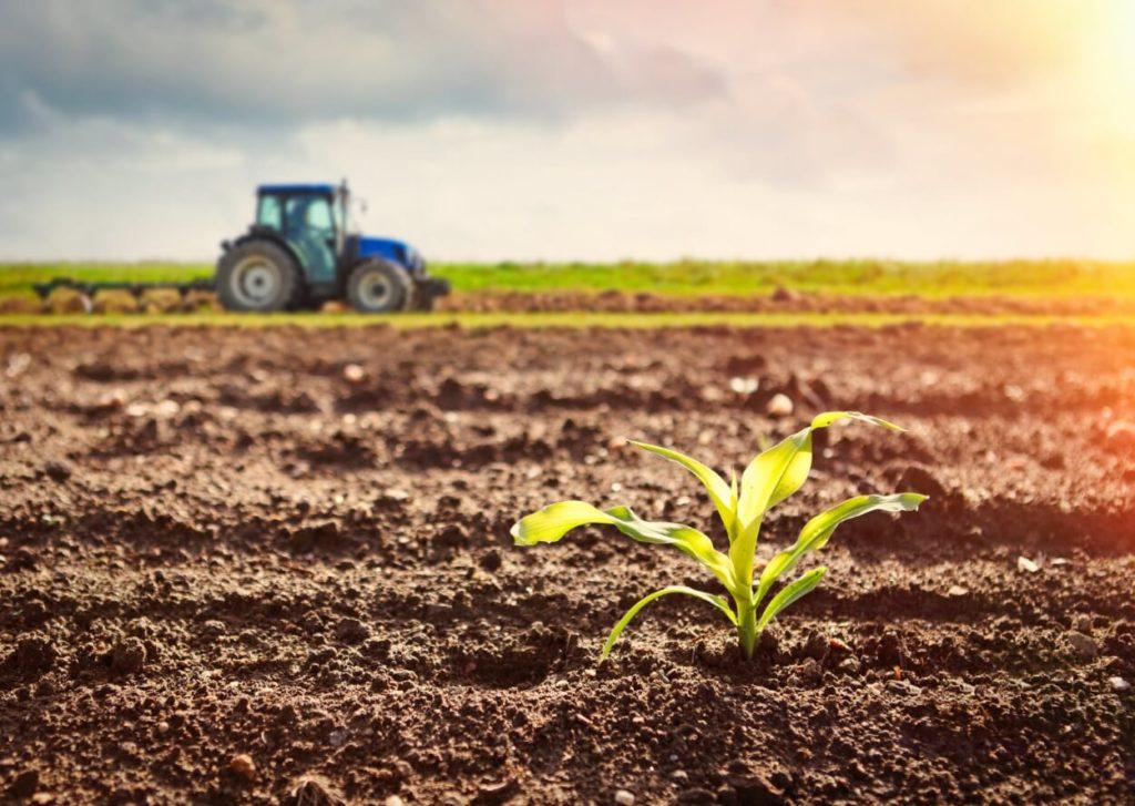 A PHYSIOMAX magas CaCO₃ és MgO tartalmával nem csak a növények számára nélkülözhetetlen tápelemmennyiséget biztosítja, de emeli a talaj kémhatását is