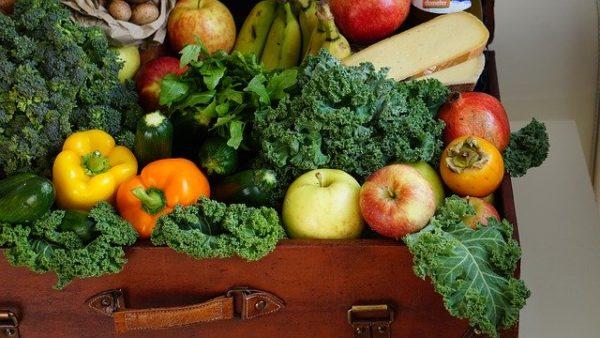 A támogatás célja az élelmiszertermelési kapacitások fenntartása és a járványügyi védekezés megerősítése - képünk illusztráció