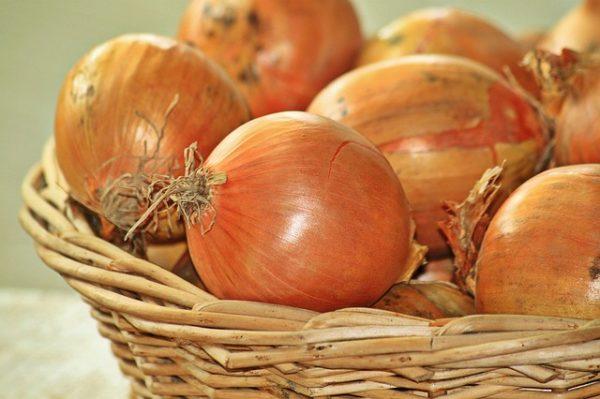 A magyar vöröshagyma csak szezonálisan található meg, 6-8 hónapig a piacon, miután elfogy, csak az import áru vásárolható. (Fotó: Pixabay, Cocoparisienne)