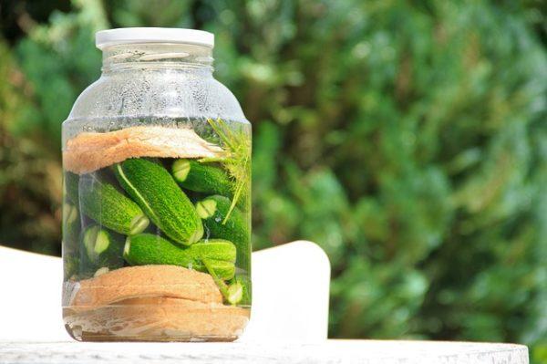 Szinte minden zöldséggel megvalósítható a kovászolás
