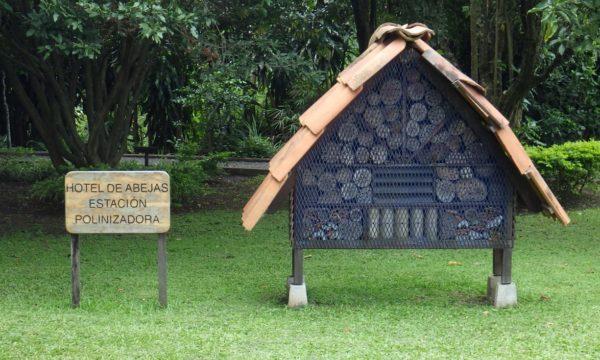 Ilyen lakóhelyek állnak a beporzók rendelkezésére San Joséban - Fotó: Curridabat Municipality