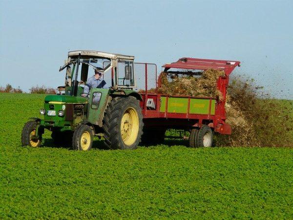 Mezőgazdasági területre évente szerves trágyával kijuttatott nitrogén hatóanyag mennyisége nem haladhatja meg a 170 kilogramm/ hektár értéket. (Fotó: Pixabay, Hans)