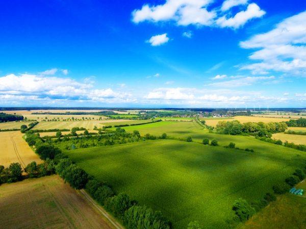 Idén augusztus 1-én hirdetik meg a 3 és 10 hektár közötti területű földeket és tulajdoni hányadokat is - képünk illusztráció