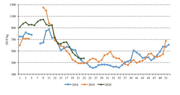 A belföldi gömbparadicsom heti termelői átlagára a Budapesti Nagybani Piacon (2018–2020), Forrás: NAIK AKI PÁIR, AGRÁRPIACI JELENTÉSEK ZÖLDSÉG, GYÜMÖLCS ÉS BOR