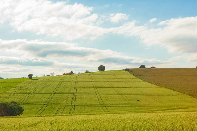 A Green Deal és a gazdák akarata nem egy és ugyanaz - képünk illusztráció