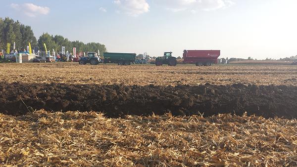 A mezőhegyesi öntözési mintaprogram 8,5 milliárdos támogatással 5500 hektáron valósul meg - Fotó: Magro.hu - CSZS