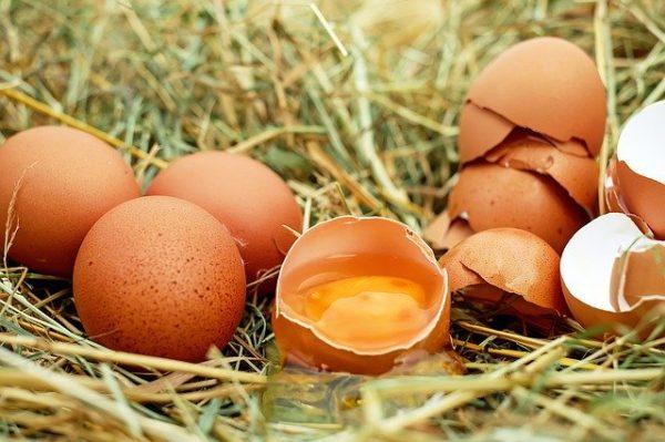 Az első fél évben 12 százalékkal nőtt a magyar étkezési tojás ára