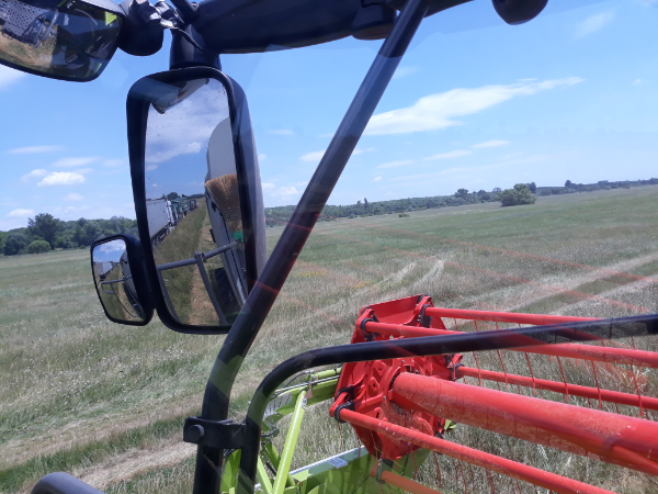A víz miatt több napot, néhol másfél hetet csúszik az aratás Kelet-Magyarországon - Fotó: Magro.hu - CSZS