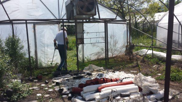 Fóliasátrak és sok műanyag hulladék helyett napelem alatt nőhet a málna az AgriPV rendszerek használatával - Fotó: illusztráció, Magro.hu - CSZS