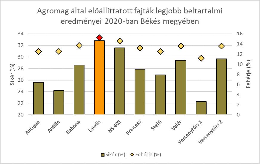 Nagyobb területen Békés megyében az Agromag által előállított fajták beltartalmi értékei