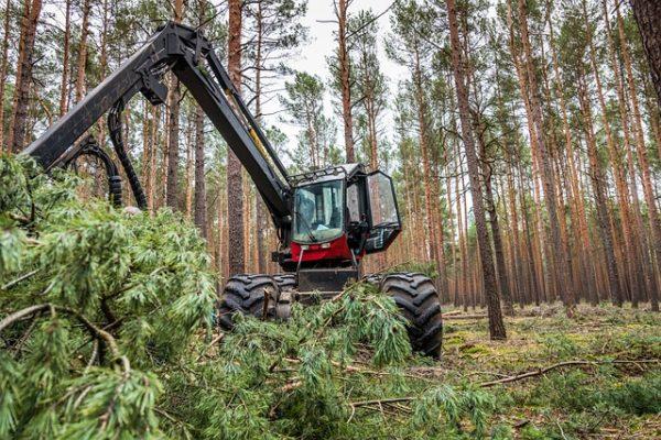 Összesen 1 milliárd forint értékben írt ki pályázatot az erdészeti gépbeszerzés támogatására az Agrárminisztérium