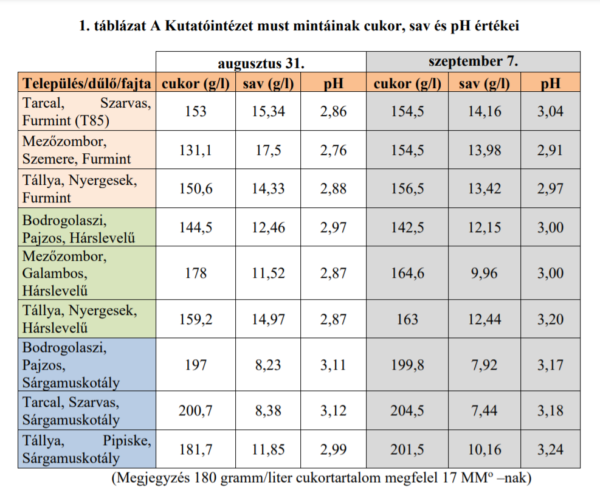 A Tokaji bor fajtáinak teljesítménye szeptember első hetében - Forrás: Tokaji Kutatóintézet