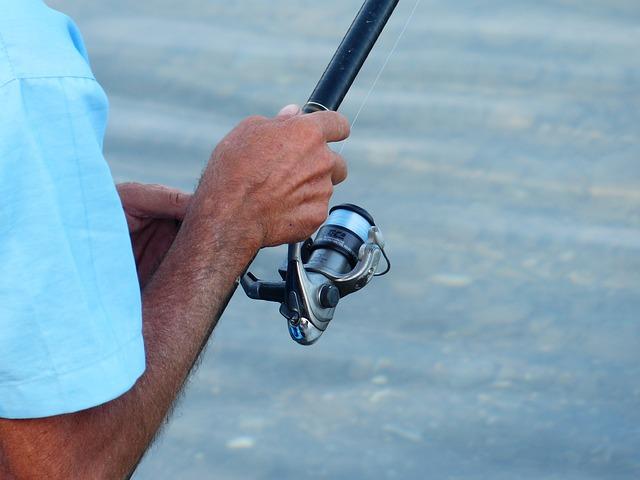 A hazai horgászati ágazat idei forgalma nagyjából 20 százalékkal múlja felül a tavalyi mintegy 40 milliárd forintot (Fotó: Pixabay, Hans)