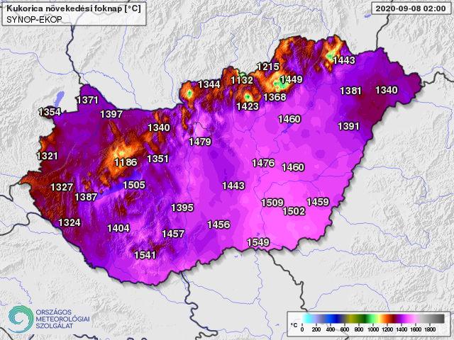 A kukoricatermesztésben használatos 10 fokos bázishőmérséklettel április 1-től számolt hőösszeg 2020. szeptember 8-án (foknap)