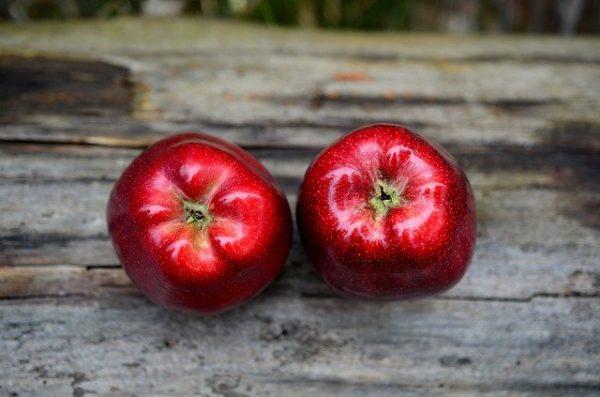 Az új nemesítésű almafajta nagyon jól tűri a szélsőséges forróságot - képünk illusztráció