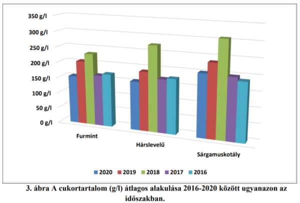 A cukortartalom alakulása az elmúlt 5 év hasonló időszakában - Forrás: Tokaji Kutatóintézet