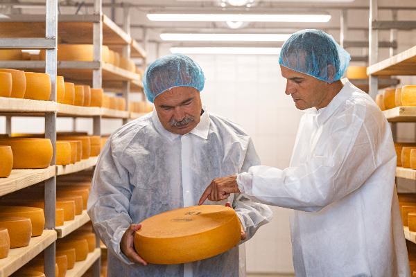 Nagy István agrárminiszter (b) és Ficsor Ádám tulajdonos egy sajtot néznek a hazai előállítású termékek népszerűsítését célzó Válaszd a hazait! kampányról tartott sajtótájékoztató helyszínén, a Ficsor Tehenészet sajtüzemében, Dunaharasztiban 2020. augusztus 27-én. MTI/Szigetváry Zsolt