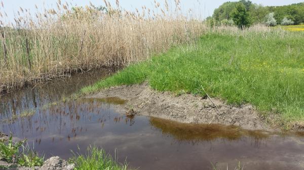 Az öntözéssel kapcsolatos beruházások igénybevételéhez a korábbinál hatékonyabb vízfelhasználásra van szükség - Fotó: Magro.hu - CSZS