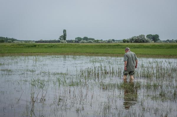 Nagy hatással lehet a magyar vízgazdálkodás jövőjére az uniós Víz-Keretirányelv Vízgyűjtő-gazdálkodási Terv felülvizsgálata - Fotó: Magro.hu, CSZS