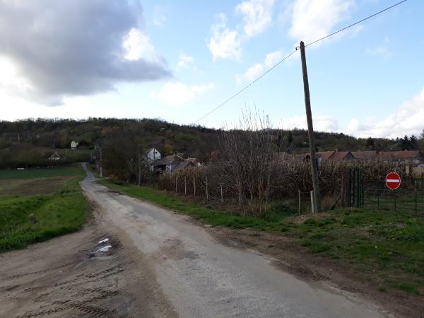 Komoly büntetéseket szabtak ki 117 személyre a félmilliárd forint uniós agrártámogatás elcsalása miatt - Fotó: Magro.hu, CSZS, illusztráció