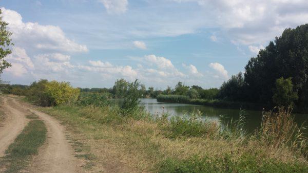 Segíti a gyakorlatot a mezőgazdasági vízszolgáltatásról szóló rendelet módosítása - Fotó: Magro.hu, CSZS, Pusztabánréve