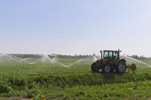 Az öntözés döntéstámogató rendszer fontos segítséget kínál a magyar gazdák számára is