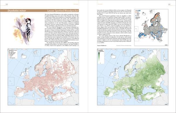 A kis fakopáncs fejezete az atlaszban - Forrás: MME