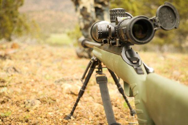 Hatalmas balszerencsét élt át egy cseh vadász, akinek egy szarvas vette el a fegyverét - képünk illusztráció