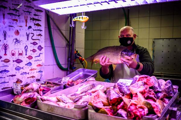 A magyar hal fogyasztásának fontosságára és előnyeire hívja fel a figyelmet Karácsonykor is az Agrárminisztérium, a Magyar Akvakultúra és Halászati Szakmaközi Szervezet (MA-HAL) és az Agrármarketing Centrum (AMC)