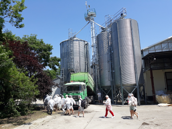 Soha nem látott mennyiségű állami pénz érkezik a következő években a magyar mezőgazdaság és az élelmiszeripar támogatására - Fotó: Magro.hu, CSZS, Abony