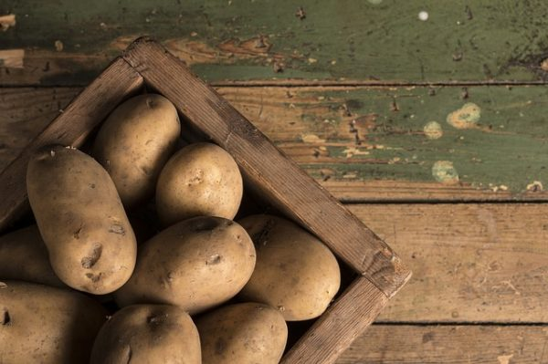 Új rendelet: több növényi szaporítóanyaghoz szükséges nyomonkövetési kód, a burgonya is érintett
