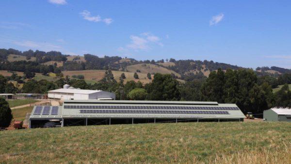 Hamarosan elkészül az első szén-dioxid-semleges tejüzem Ausztráliában - Fotó: Victorian Government, Victoria Ausztrál Szövetségi Állam