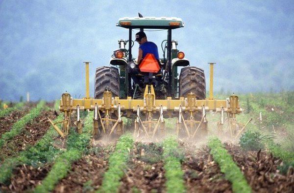 A gazdálkodók fontolóra vehetik a peremhálózati felhőmegoldást