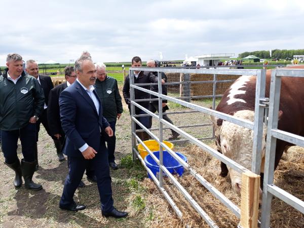 Hatékony segítséget ad a mezőgazdasági vállalkozóknak az Agrár Széchenyi Kártya az agrárminiszter szerint - Fotó: Magro.hu, CSZS, Mezőfalva